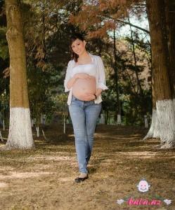 hamile meshede