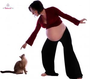 hamile idman edir
